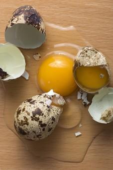 たまご 卵 玉子 エッグ 卵色 料理 食べ物 食材 食料 物撮り 屋内 人物なし 上から 2個 レシピ 白 木 ベージュ 黄身 白身 アップ ズーム 鶏 にわとり ニワトリ 割る 鶉 うずら ウズラ まだら模様 殻