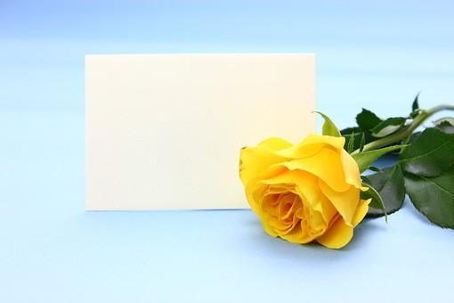 父の日 イベント プレゼント ギフト 行事  花 フラワー 生花 バラ ばら 薔薇 明るい さわやか 爽やか  花束 黄色 青色 水色 6月 六月 感謝 贈る 青バック カード メッセージ メッセージカード スペース 文字スペース テキストスペース