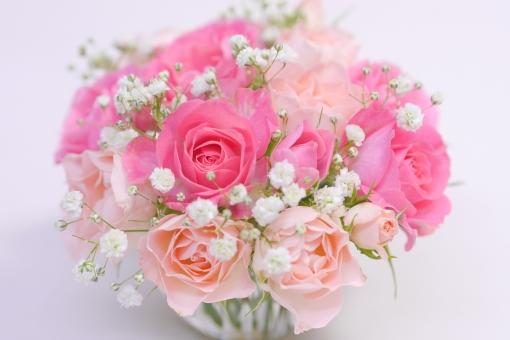 ブーケ ピンク 白バック 白 小物 かすみ草 カスミソウ 合格祝い 結婚 結婚式 バレンタイン 退職祝い 感謝 かわいい 可愛い 可憐 黄色 マトリカリア ギフト 壁紙 母の日 父の日 緑 植物 初夏 5月 6月 五月 六月 メッセージ カード フラワーアレンジ 行事 バラ ばら 薔薇 花 華やか 綺麗 きれい 贈り物 美 美しい 美容 アレンジ 花束 バースデー 誕生日 お祝い プレゼント 背景 バック 素材 背景素材 背景写真 ローズ フラワー 花びら バックグラウンド 明るい エステ イメージ アレンジメント 癒し いやし 健康 アロマ 5月 6月 春 夏 秋 冬