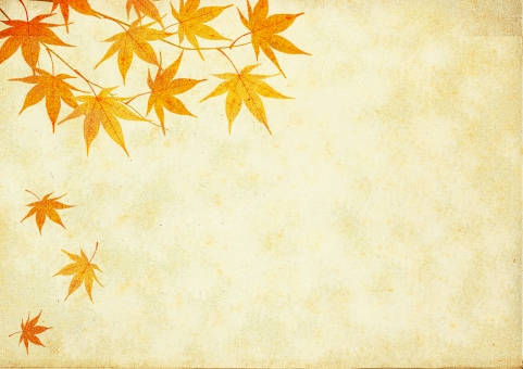 紅葉 秋 もみじ 秋の風物詩 季節 背景 背景素材 自然 葉 ビンテージ バックグラウンド テクスチャ テクスチャー 古紙 古い紙 季節感 秋らしい 枝 リーフ 風情 日本的な 紅葉狩り ひらひら ヒラヒラ 落ちる 色づく 色づく紅葉 オータム AUTUMN 落ち葉