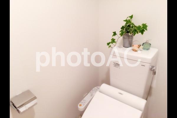 トイレのインテリア・風水の写真