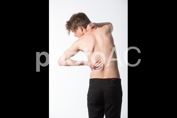 男性の背中13の写真