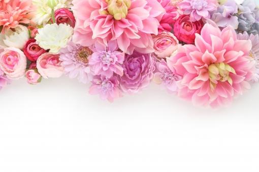 ふわふわ 花のフレーム ピンク系 3の写真