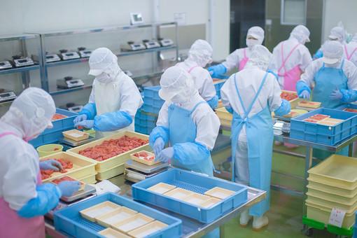 食肉加工工場の写真
