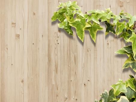 木目テクスチャと植物背景横位置素材の写真