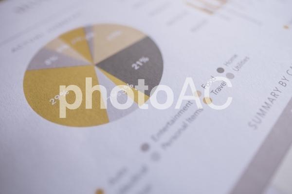チャートグラフ・円グラフ9の写真