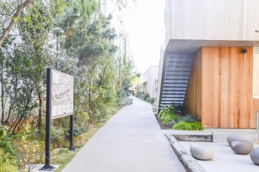 代官山 ログロード 商業施設 道 看板 建物 建築 木 板壁 カフェ ショップ レストラン 植木 植物 風景 景色 野外 屋外 町並 散歩 散策 植物 板壁 渋谷区 東京 おしゃれ