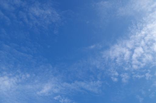 秋空の写真