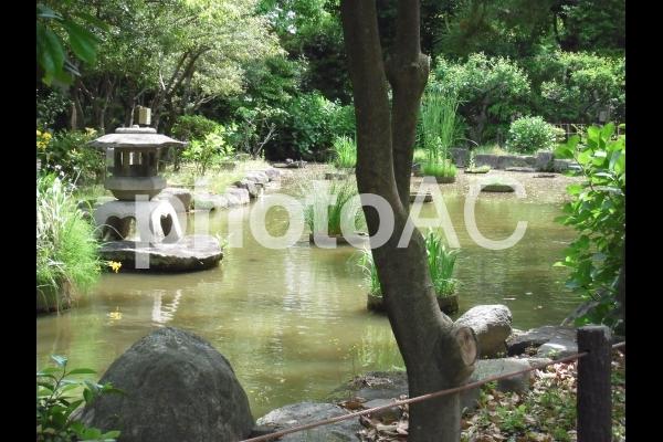 楽水園 庭園1の写真