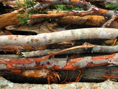 薪の木 まき 薪 薪ストーブ ストーブ ストーブ用 薪ストーブ用 自然 天然 使える 切る 間伐 伐採 いっぱい たくさん 山積み 薪山積み まき山積み 植物 木 き エコ 環境 背景 テクスチャ