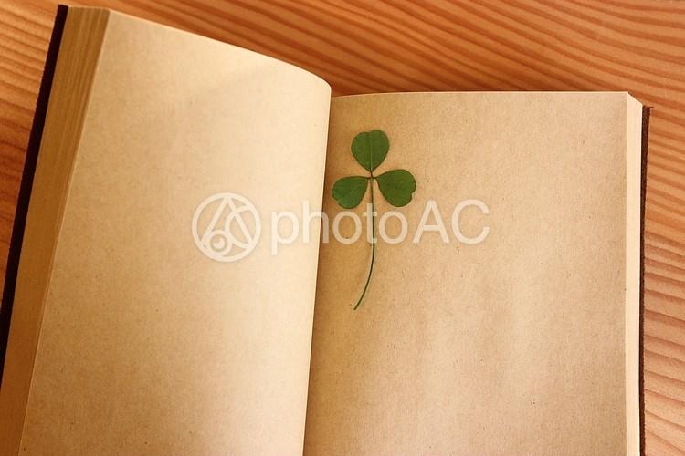 本と押し花6の写真
