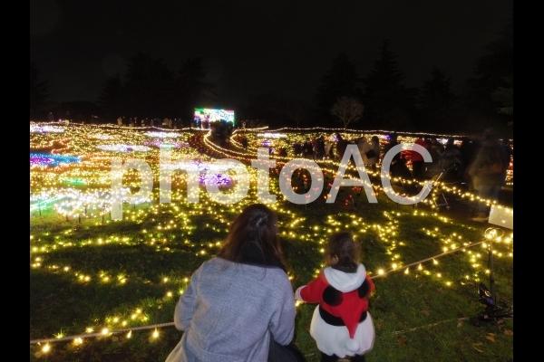 昭和記念公園のイルミネーション4の写真