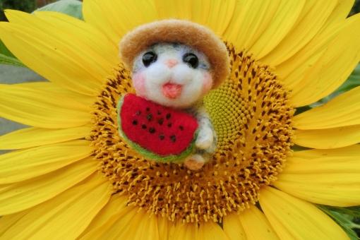 向日葵 ひまわり ヒマワリ 夏 花 黄色 イエロー 花びら 夏休み スイカ 猫 ネコ 小物 マスコット 明るい 元気 暑中お見舞い 残暑見舞い 植物 季節