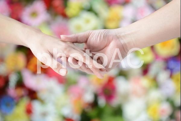 手をとりあうの写真