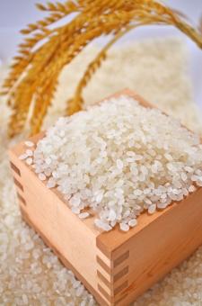 秋 秋の味覚 升 生米 米画像 白米 白い米 ご飯 炊く前の米 稲穂 収穫 実り 食べ物 新米 稲 稲刈り フリー画像 フリーダウンロード 無料画像 無料ダウンロード 食べ物無料ダウンロード