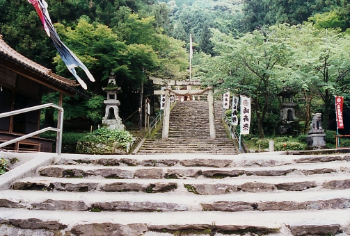 satochi サトチ 山口 yamaguchi 山口大神宮 神社 shrine じんじゃ とりい トリイ 鳥居 step 階段 かいだん 石段 japan 日本