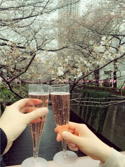 桜 サクラ さくら 春 スプリング スパークリング 泡 ワイン スパークリングワイン シャンパン champagne グラス ワイングラス 中目黒 川