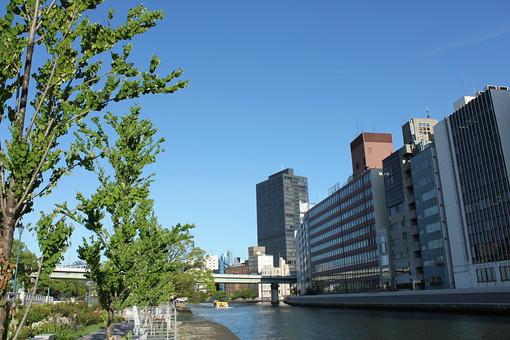 大阪 中之島 バラ園 ビル街 ビル ビジネス街 空 街並み 晴れ 快晴 ブルースカイ 晴天 好天 パースペクティブ 遠近法 木々 葉 緑 川 川沿い ビジネス オフィス 長方形 立方体 リバーサイド
