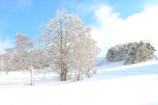 新雪に関する写真写真素材なら写真ac無料フリーダウンロードok