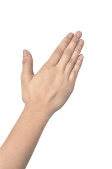 人物 背景 白 白背景 白バック 切り抜き パーツ ボディパーツ 腕 片手 ポイント 指 手首 ジェスチャー 身ぶり 肌 余白  シンプル ハンドパーツ 右手 手ぶり 人の手 手のひら ハーイ 手を挙げる 挙手 パー
