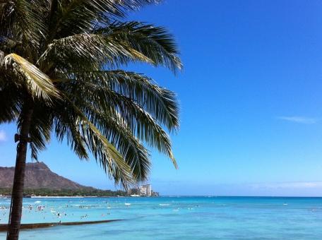 海 ヤシの木 青 空 青空 ダイヤモンドヘッド 休日 夏 夏休み ホリデー 風景 きれいな空 青い空 青い海 椰子の木 やしの木 旅行 バカンス リフレッシュ ハワイ 自然 景色 きれいな水 植物 南国 ホノルル オアフ オアフ島 オーシャンビュー 癒し きれいな海 透き通る水 エメラルドグリーン 海水浴 海水浴場 hawaii honolulu diamondhead blue bluesky ocean holiday vacation beach palmtree