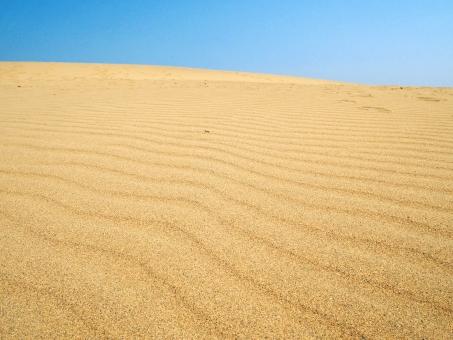 「鳥取砂丘 フリー」の画像検索結果