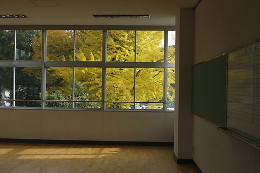 教室 学校 校舎 建物 黒板 窓 ガラス 秋 秋イメージ 紅葉 銀杏 いちょう イチョウ 黄色 黄色い葉 葉っぱ 葉 樹木 樹 木 枝 小学校 中学校 高校 高等学校 田舎 郊外