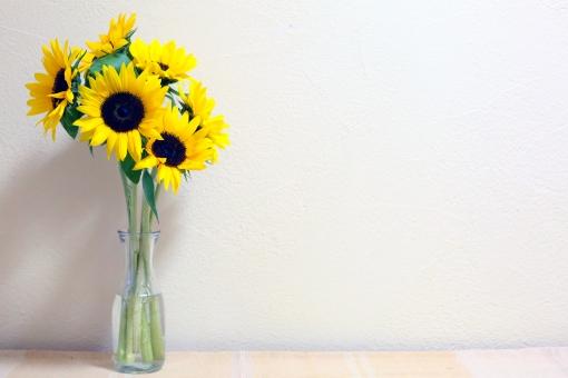 ひまわり 切り花 夏 黄色 花 夏の花 植物 花びら 向日葵 自然 ヒマワリ コピースペース 真夏 葉 生花 フラワーアレンジメント 切花 生け花