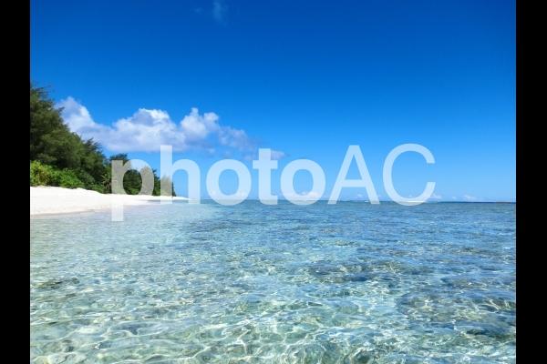 海から見る白いビーチの写真