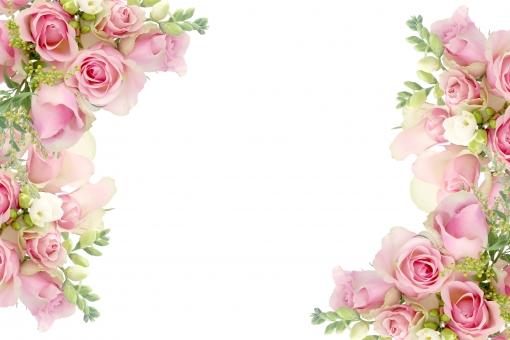 花フレーム ピンク色のローズとフリージアのブーケ背景画像の写真