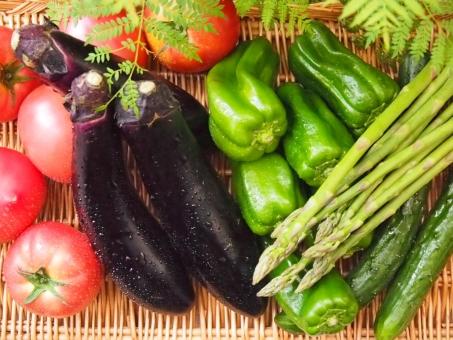 トマト 長茄子 ピーマン アスパラガス 胡瓜 みずみずしい フレッシュ ビタミン 健康 夏野菜 ヘルシー 食物繊維 アントシアニン リコピン