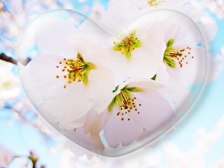 ハート はーと heart 素材 背景 アイコン ラブ love 愛 ロマンチック バレンタイン フレーム クリスタル風 枠 はな 花 華 さくら サクラ 桜 ピンク 空