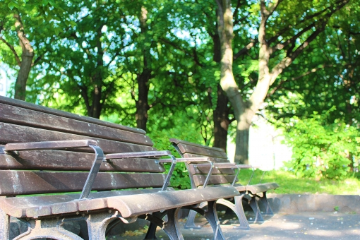 公園 椅子 イス いす ベンチ べんち 長いす 長イス 腰掛け 設備 公共 屋外 外 野外 木のベンチ 木製 小春日和 公園のベンチ 心地いい 新緑 5月 セラピー 日差し 眩しい グリーン 木立 朝日 木洩れ日 壁紙 4月 すっきり スッキリ 林 樹 山登り トレッキング ピクニック ハイキング 森林浴 テラピー リラックス 明るい 青空 晴れ まぶしい 輝き 輝く 葉 植物 草 景色 6月 初夏 素材 葉っぱ 一面 あざやか 鮮やか すがすがしい 清々しい ヒーリング デトックス みずみずしい 樹木 背景素材 写真素材 背景 光が差す 差し込む光 太陽の光 木の間 自然 きれい 綺麗 朝 早朝 森 森林 光芒 長椅子 涼しい すずしい 気持ちいい 気持ちよい 和む なごむ 癒し 癒される 癒す おしゃべり しゃべり 会話 安らぎ 木陰 さわやか 爽やか すてき 素敵 ゆっくり ゆったり 落ち着く 休日 祝日 土曜 土曜日 日曜 日曜日 お散歩 散歩 散歩道 夏 春 木漏れ日 緑陰 樹陰 陰 日陰 下 木かげ 日かげ 緑 芝公園 木材 木 座る 腰かける 一休み ひとやすみ 休み 休む お休み 休憩 休息 くつろぐ くつろぎ 昼休み お昼休み 一息 ホッとする ほっとする 昼食休憩 昼やすみ 息抜き 息ぬき 気分転換 深呼吸 新鮮 新鮮な 新鮮な空気 日光