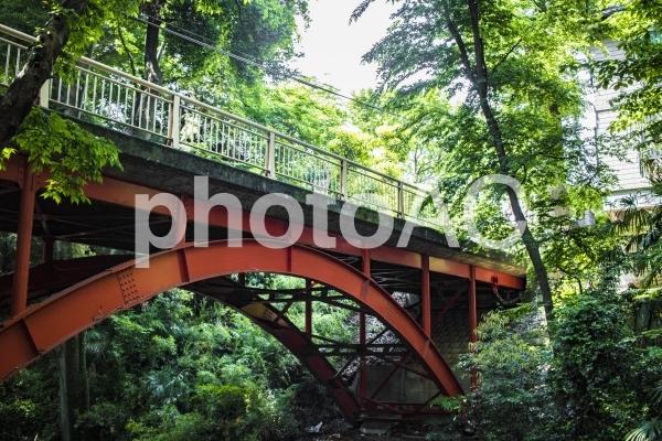 等々力渓谷のゴルフ橋の写真