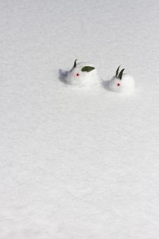 ゆきうさぎ 雪兎 雪ウサギ 冬 雪景色 雪原 南天 植物 葉 実 可愛い かわいい お正月 和 雪像 雪肌 雪遊び ほのぼの 親子 兄弟