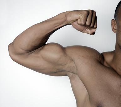 筋肉 マッスル ボディビルダー ボディ 体 人間 人体 男性 男 漢 強い 屈強 頑丈 スポーツ 筋力 筋トレ ボクシング ボクサー トレーニング スポーツジム アスリート ストイック ビルドアップ 憧れ ダイエット ムキムキ 腕 二の腕 上腕筋 血管 ポーズ ガッツポーズ 力こぶ