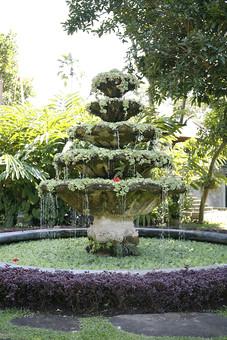 噴水 池 水 水しぶき 飛沫 流れる 植物 草 葉 落ちる 木 樹木 花 アジア 緑 南国 リゾート 自然 屋外 野外 公園 庭 庭園 木々 水面 涼しい 清涼 滴る 水滴 雫