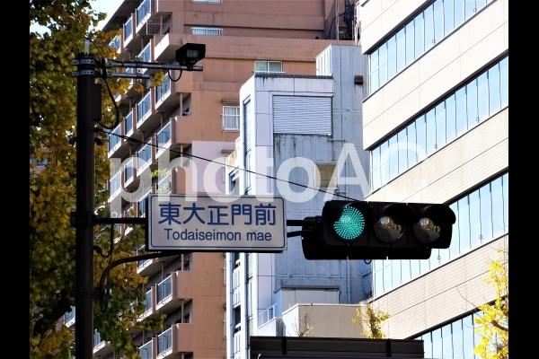 青信号2の写真