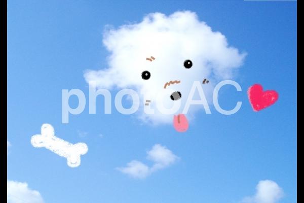 わんこ雲の写真