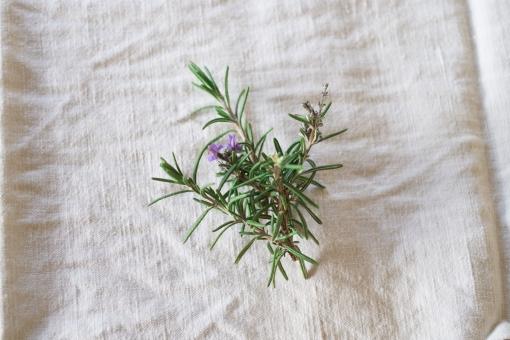 ローズマリー rosemary ハーブ herb はーぶ 肉料理 スパイス 香り付け 香り 紫 花 はな 植物 キッチンガーデン キッチン ガーデニング