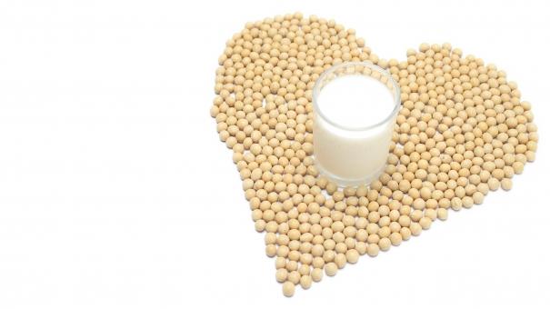 和食 ハート ハート型 愛 かわいい 秋の食材 グラス 乾燥豆 たんぱく質 穀物 栄養 生 豆類 食物 健康食 健康食品 一杯 いっぱい たくさん 沢山 スペース 美容食 有機栽培 オーガニック 無農薬 日本産 国内産 国産 北海道産 文字スペース 余白 コピースペース 食品 蛋白質 タンパク質 植物性タンパク質 白 白色 白バック 白背景 原料 材料 美味しい おいしい テキストスペース 豆乳 大豆 豆製品 飲み物 飲料 美容 イソフラボン ダイズ マメ まめ コップ ガラス ヘルシー 食べ物 豆 健康 飲物 食材 秋 旬