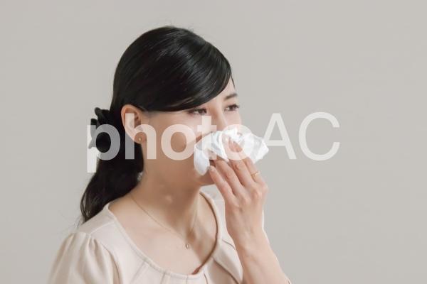 ティッシュで鼻をかむ女性の写真