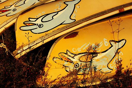 イルカ いるか 海豚 イラスト 画 絵 ボート 乗り物 舟 船 積む 重ねる 廃品 植物 枯れ葉 秋 葉 葉っぱ 夕日 夕焼け 夕方 夕暮れ 日没 日の入り 景色 風景