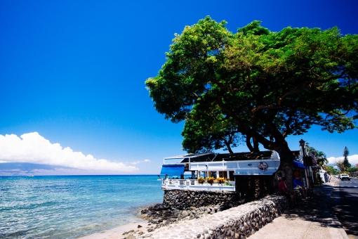 ハワイ マウイ島 ラハイナ 海 雲 ラナイ島 大きな木 レストラン 海岸 砂浜 海辺 白壁 シーフード 夏 熱い 常夏 旅行 ガイドブック 青い コピースペース ポストカード 風景 癒やし 波 爽やか いやし さわやか イメージ