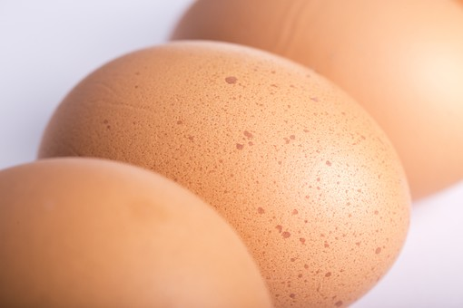 たまご 卵 玉子 エッグ 横一列 楕円 白バック 卵色 ベージュ 白 料理 並べる 生き物 食べ物 食材 食料 置く 置いてある 物撮り 屋内 人物なし 横から視線 殻 斑点 3個 整然 複数 レシピ ひしめきあう アップ ズーム 鶏 にわとり ニワトリ