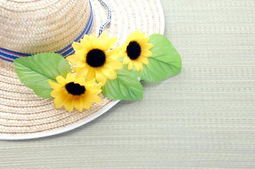 麦わら帽子 麦わらぼうし 麦藁帽子 麦わら 麦藁 ぼうし 帽子 ひまわり 向日葵 ヒマワリ 夏 夏休み 日焼け 紫外線 紫外線対策 畳 和 日本 背景 背景素材 アクセサリー 美容 健康 コピースペース テキストスペース