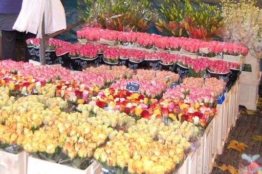 マルシェ 市場 オランダ アムステルダム ヨーロッパ 花 バラ