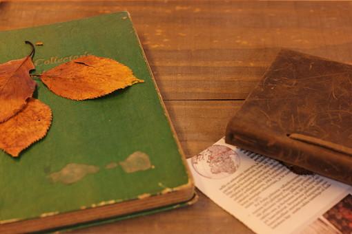 読書の秋9の写真