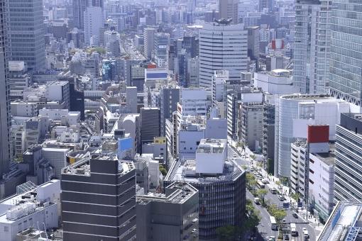 大都市の風景の写真