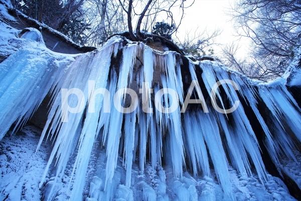 結氷の七条大滝の写真